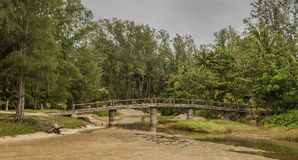 Djungel LocalLandscape för KohPhangan Thailand broflod Arkivbild