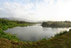 Djungelflod i karibisk landskapsikt Arkivbild