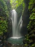 Djungellandskap med flödande turkosvatten av vattenfallet på den djupa tropiska regnskogen Royaltyfri Foto