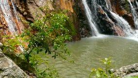 Djungelparadislandskap av det tropiska landet Vattenfallkaskad i grön regnskogrörelse av vattenflöde från klippan arkivfilmer