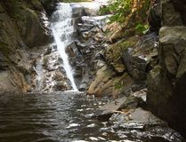 djungelvattenfall Royaltyfri Foto