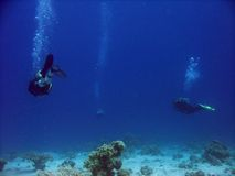djup dykning Arkivfoto