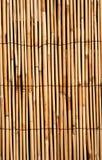 djup guld- textur för bac-bambu Royaltyfri Fotografi