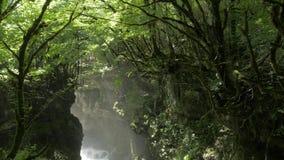 Djup Martvili kanjon i Georgia lager videofilmer