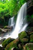 djup skogloeithailand vattenfall Fotografering för Bildbyråer