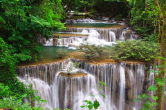 djup skogvattenfall Royaltyfria Bilder