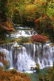 djup skogvattenfall Royaltyfri Fotografi