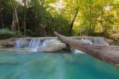 Djup skogvattenfall i den Kanchanaburi nationalparken, Thailand Arkivfoton