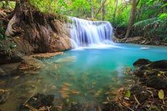 Djup skogvattenfall i Kanchanaburi (Huay Mae Kamin) Arkivbilder