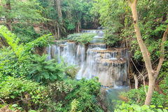 Djup skogvattenfall i Kanchanaburi (Huay Mae Kamin) Fotografering för Bildbyråer