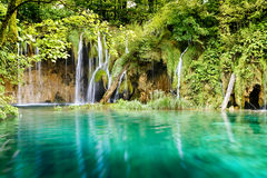 Vattenfall i den djupa skogen, Kroatien royaltyfri fotografi