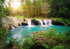 Djup skogvattenfallnationalpark. Royaltyfri Bild