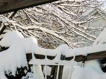 Djup snö på träd Arkivbilder