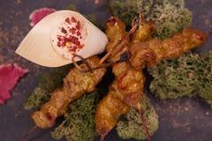 Djup stekt kycklingsenor och sås på den vita maträtten med träbakgrund Royaltyfri Bild