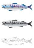 djup vektor för fiskillustrationhav Royaltyfri Foto