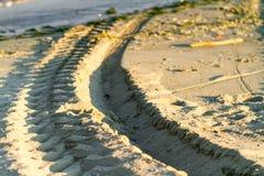 Djupa däckspår i sand i morgon tänder Arkivfoto