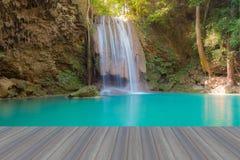 Djupa skogvattennedgångar i nationalpark Arkivfoto