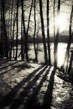 Djupa skuggor på solnedgången Arkivbild