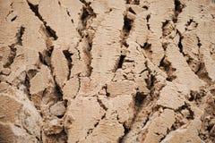 Djupa sprickor för bakgrund i våt sand royaltyfria foton