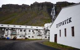 Djupavik, Island Stockfotografie