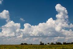 Djupblå sommarhimmel med ljusa pösiga moln, Bond County, Illinois fotografering för bildbyråer