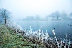 Djupfryst Amstel flod royaltyfria foton