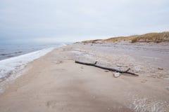 Djupfryst baltiskt hav och snö Folk och kallt väder Loppfoto 2019 arkivfoton