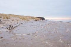 Djupfryst baltiskt hav och snö Folk och kallt väder Loppfoto 2019 royaltyfri foto