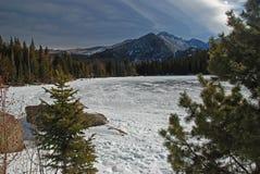 Djupfryst björn Lake Arkivfoto