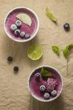 Djupfryst blåbäryoghurt Arkivbilder
