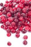 Djupfryst Cranberries Arkivbilder