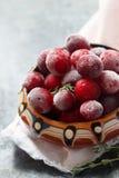 Djupfryst cranberry arkivbilder