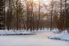 Djupfryst damm i snöfall, Catherine Park, Pushkin Royaltyfri Bild