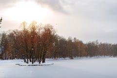 Djupfryst damm i snöfall, Catherine Park, Pushkin Arkivfoto