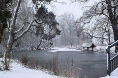 Djupfryst damm i snön Arkivfoto