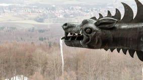 Djupfryst drake Arkivbild