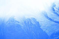 Djupfryst exponeringsglas Arkivbild