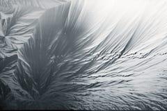 djupfryst exponeringsglas Arkivfoto