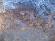 djupfryst fönster Royaltyfri Foto