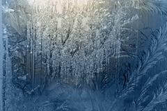 djupfryst fönster glass4 arkivbild