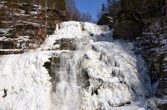 Djupfryst is för Hector Falls closeupvit royaltyfria foton