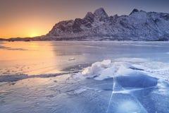 Djupfryst fjord på Lofotenen i nordliga Norge arkivbilder