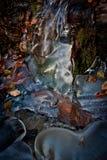 djupfryst flod Royaltyfria Bilder