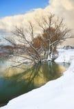 djupfryst flod Arkivbilder
