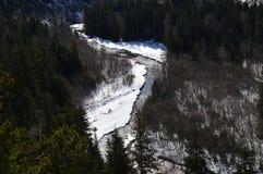 Djupfryst flod Fotografering för Bildbyråer