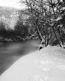 djupfryst flod Arkivbild