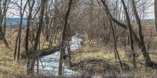 Djupfryst flod eller liten vik i thvintertid arkivbild