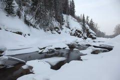 Djupfryst flod i de Altai bergen Arkivfoto