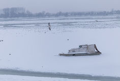 Djupfryst flod i is, fiskebåt Royaltyfria Bilder
