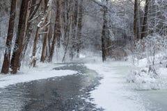 Djupfryst flod i litauisk vildmark Royaltyfri Bild